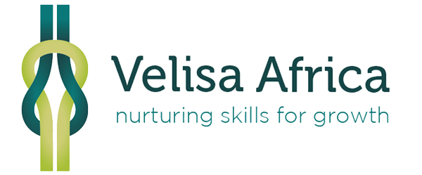 Velisa Africa Logo